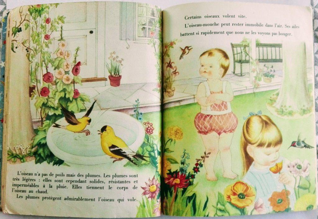 livre jeunesse années 50