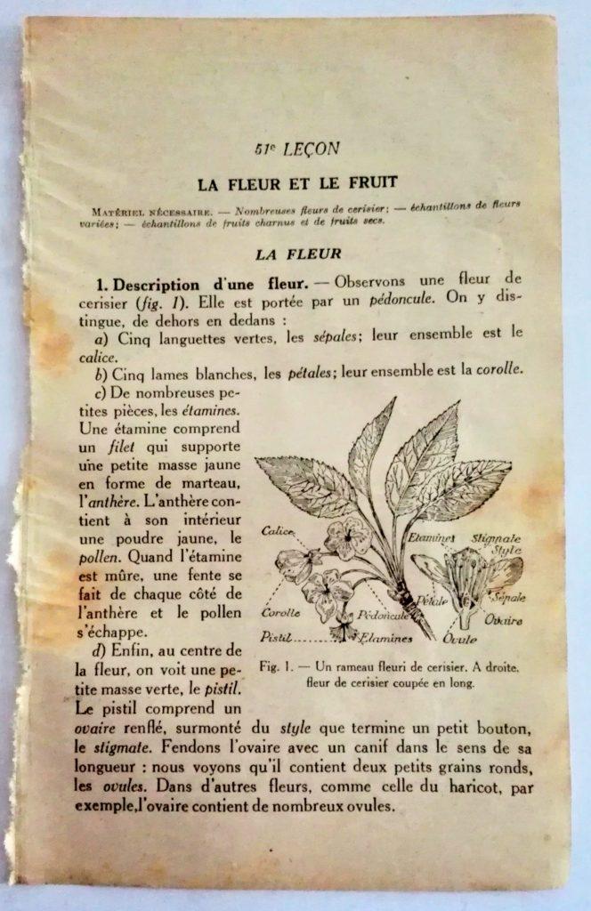page déchirée de vieux livre scolaire à imprimer gratuitement
