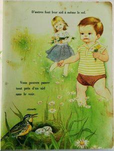 illustration vintage années 50 d'oiseau au printemps dans un livre pour enfants