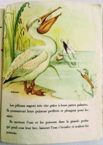 illustrations vintage pour enfants années 50