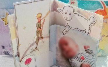 Album étoile scrap-plaisir tout en douceur thème Le Petit Prince